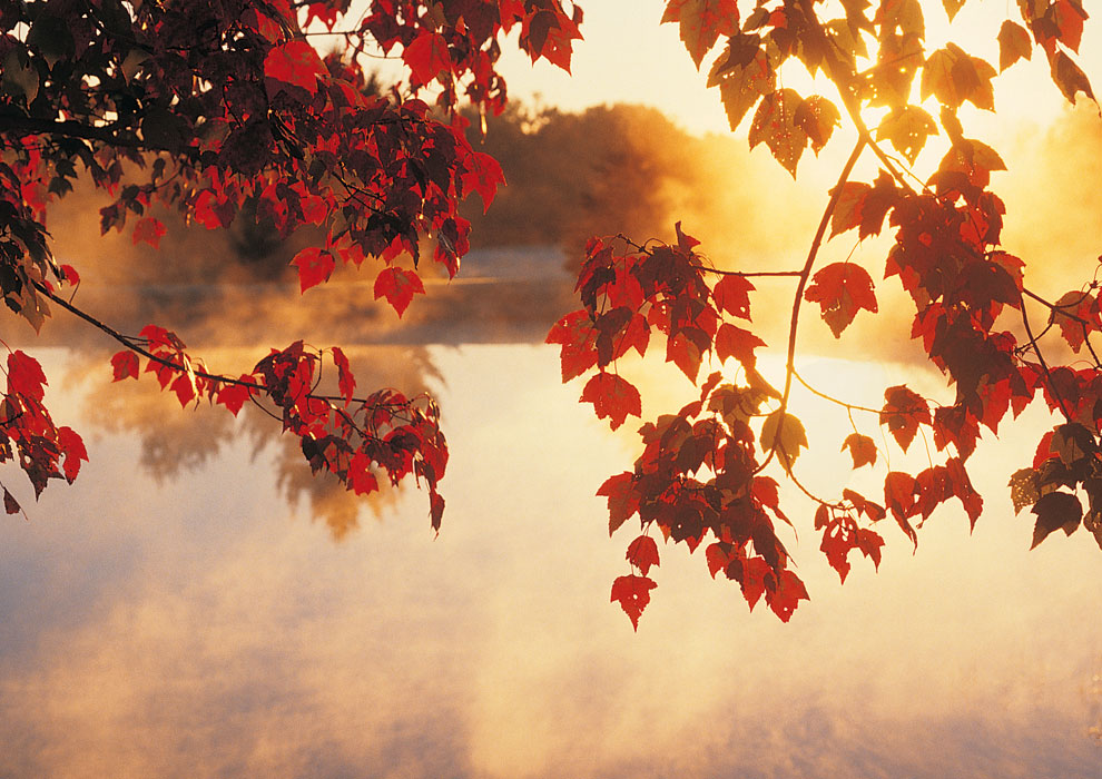 Fall Foliage Dining Package at the Atlantic Oceanside Hotel in Bar Harbor, Maine